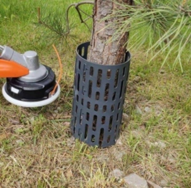 Koka stumbra aizsargs Treemex